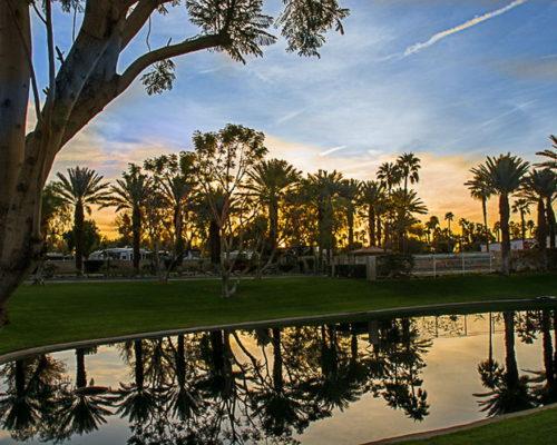 Emerald Desert RV Resort