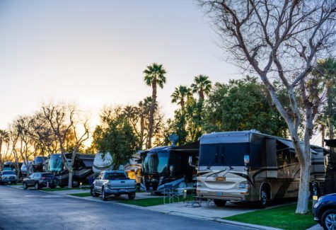 Emerald Desert RV Resort Grounds
