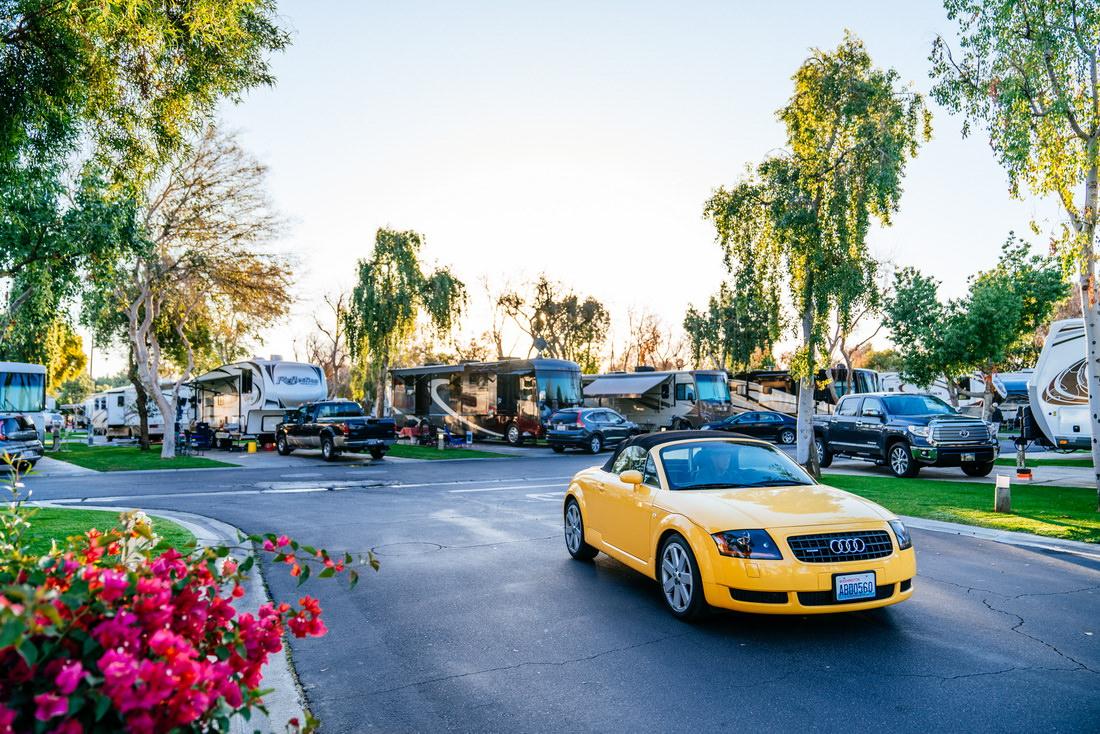 Emerald Desert RV Resort Grounds